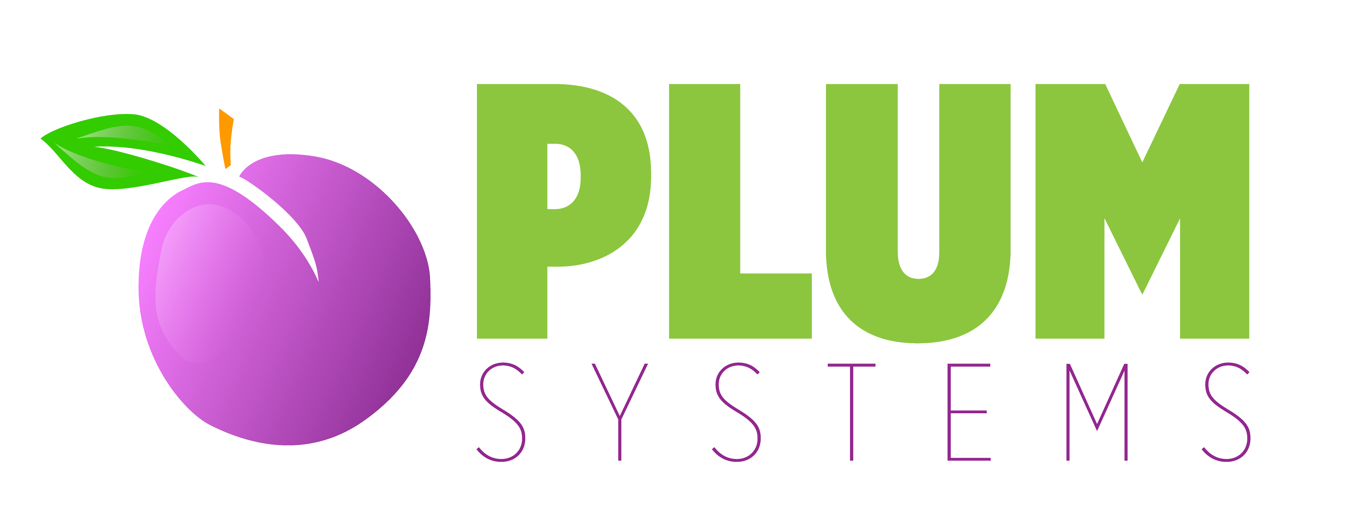 Plum Systems, Inc.